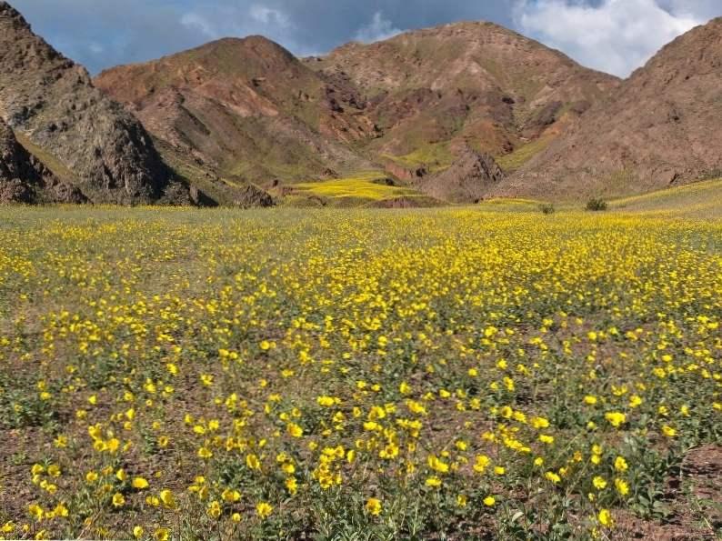 unleash your inner adventurer at death valley national park 5