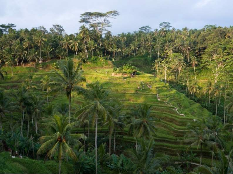 10 best things to do in bali indonesia