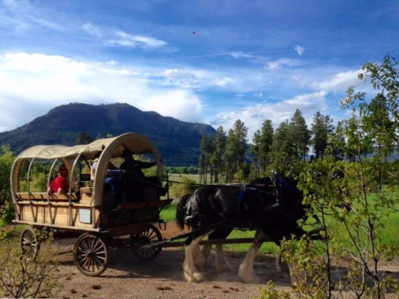 10 best things to do in durango colorado 7