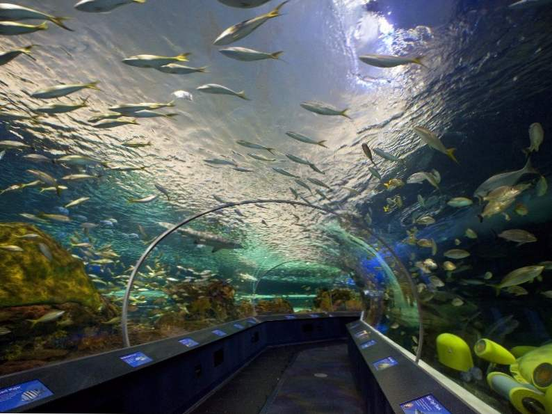 10 best things to do in toronto canada 6