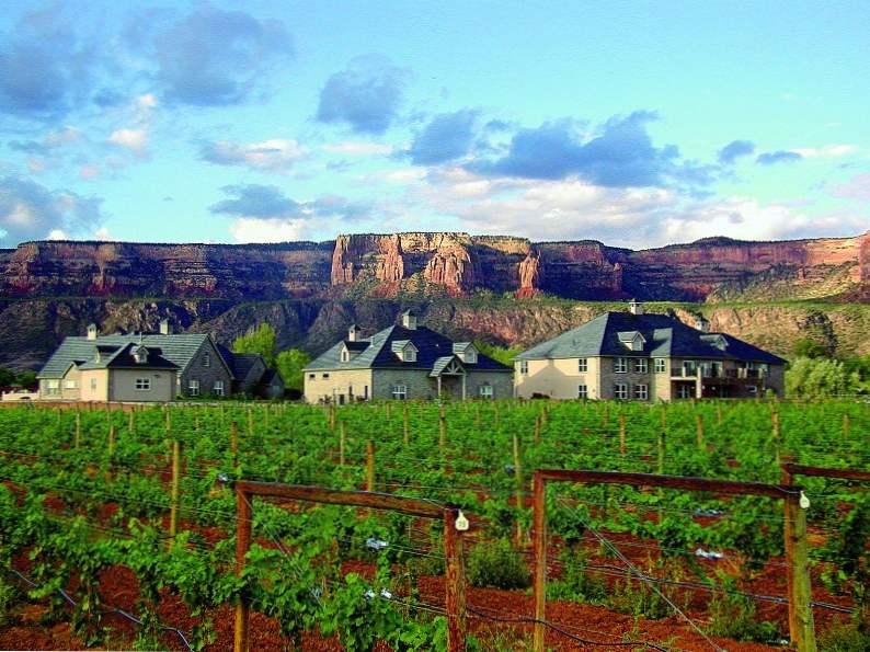 10 best wineries to visit in colorado