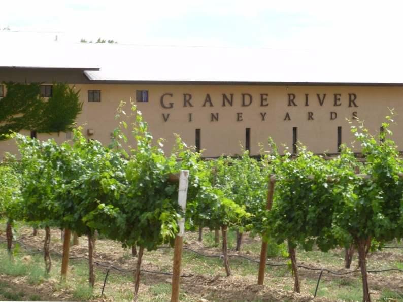 10 best wineries to visit in colorado 10