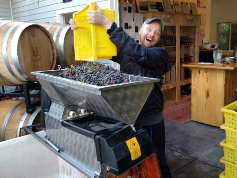 10 best wineries to visit in colorado 8