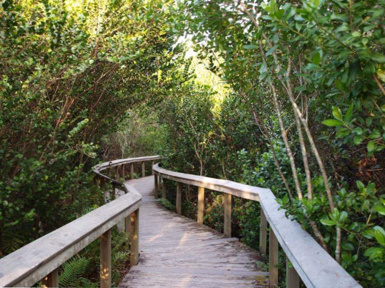10 bike trails in florida with the most breathtaking scenery