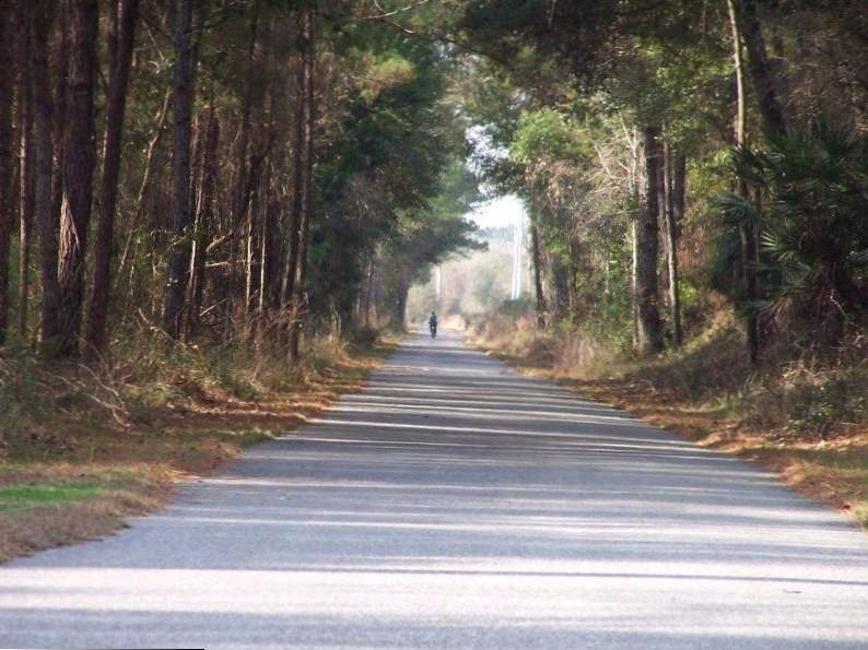 10 bike trails in florida with the most breathtaking scenery 2