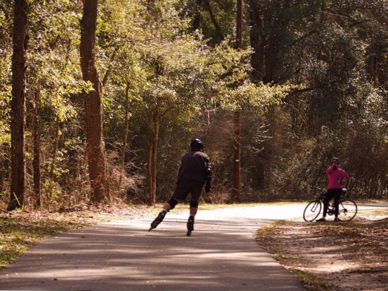 10 bike trails in florida with the most breathtaking scenery 4