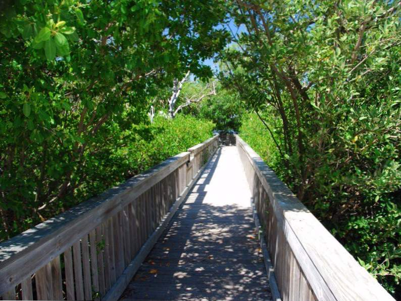 10 bike trails in florida with the most breathtaking scenery 6