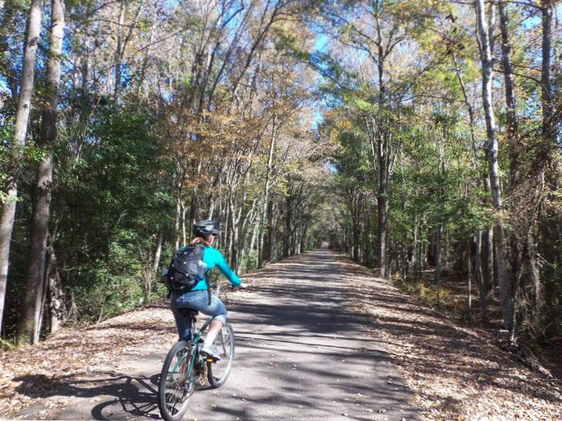 10 bike trails in florida with the most breathtaking scenery 7