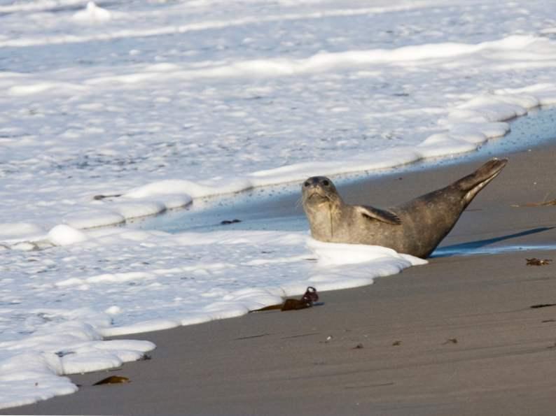 10 california coastal towns everyone should visit 5