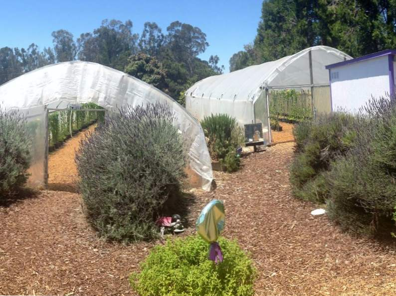 10 must see farms in california you need to tour 5