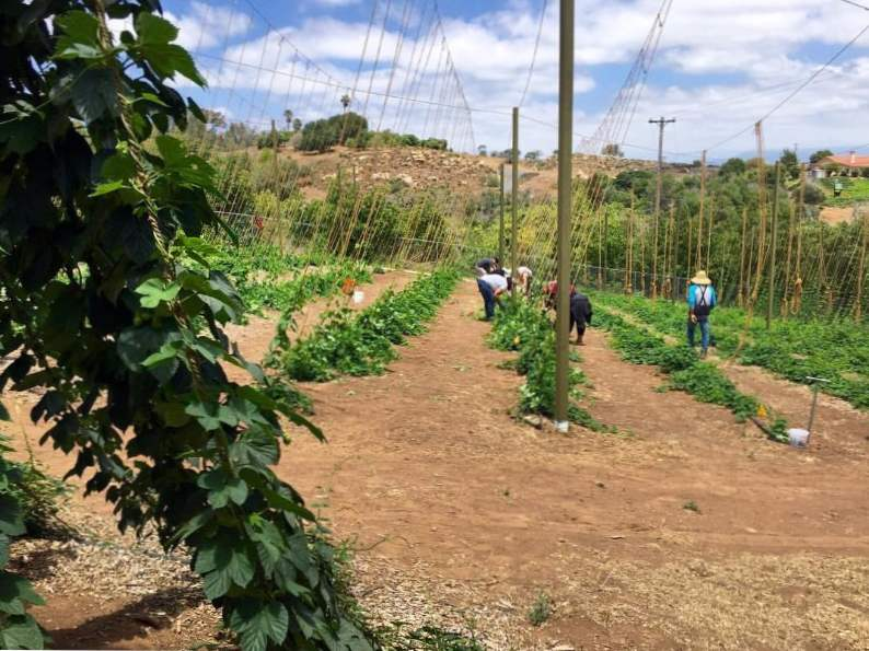10 must see farms in california you need to tour 6