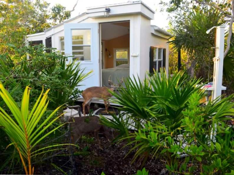 10 of the coolest airbnb vacation rentals in florida 6