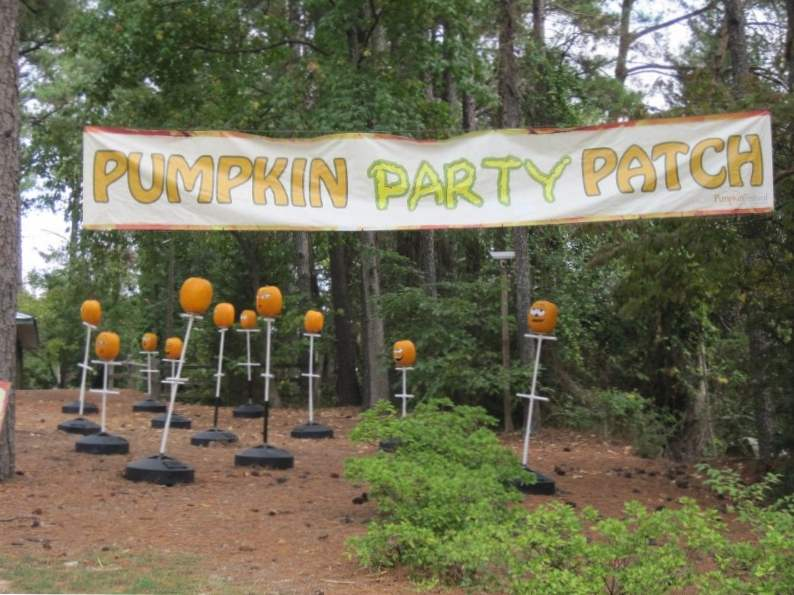10 pumpkin patches to visit in georgia this fall 10