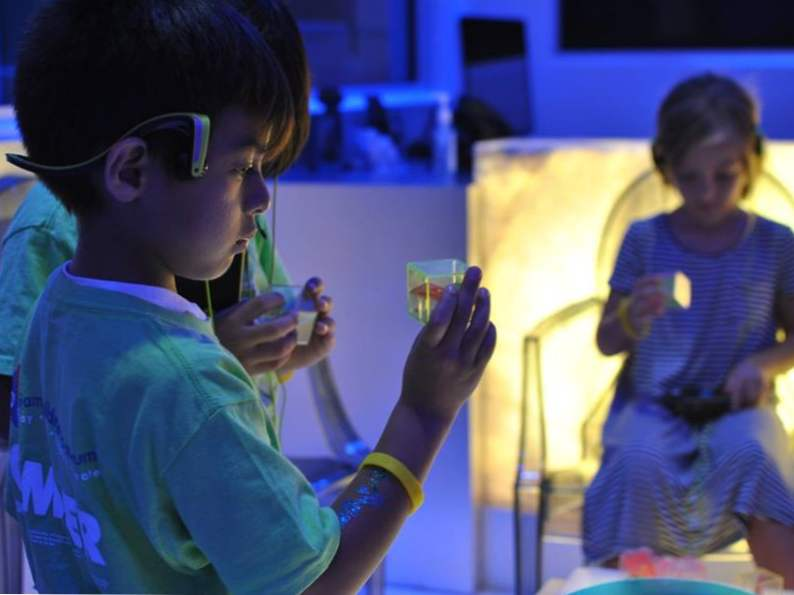 13 best things to do with kids in miami florida