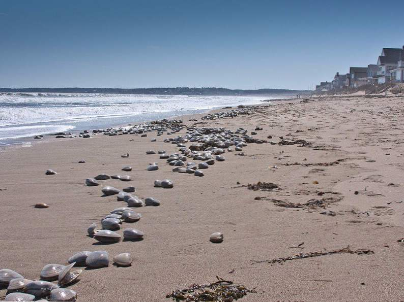 13 of the best beaches in the usa 5