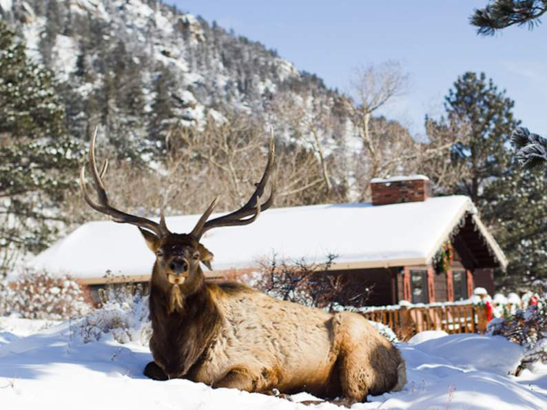 7 best wilderness lodges in the rocky mountain states 3
