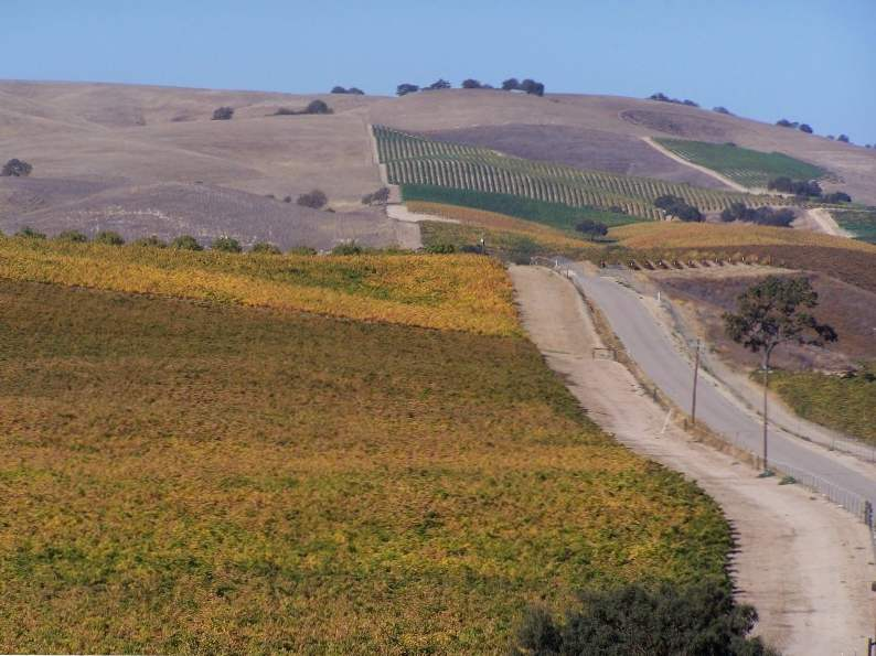 8 of the most spectacular california wine regions to visit 3