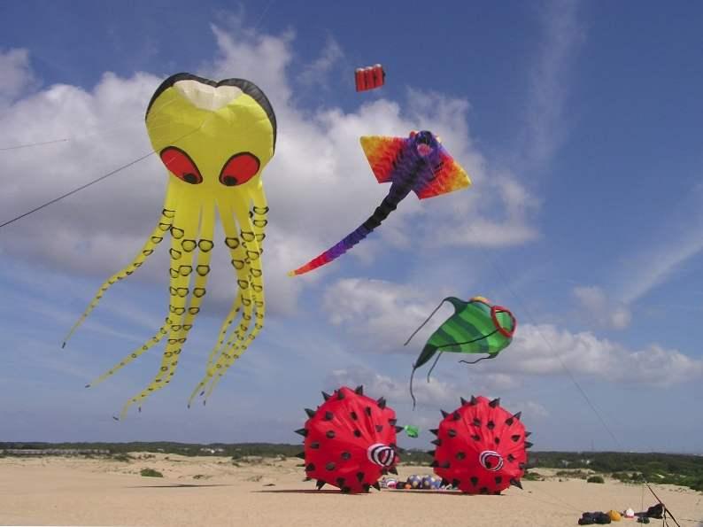 discover north carolinas rogallo kite festival