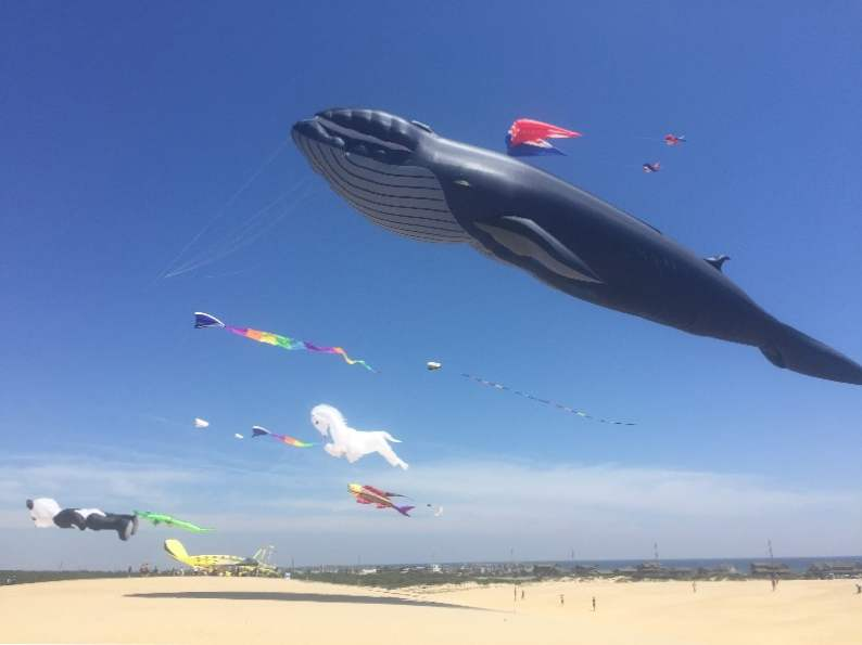 discover north carolinas rogallo kite festival 2