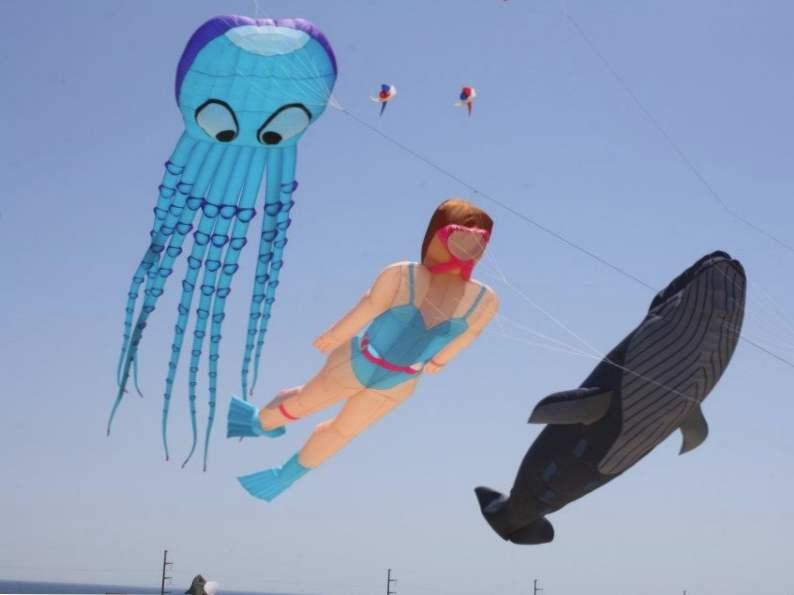discover north carolinas rogallo kite festival 4