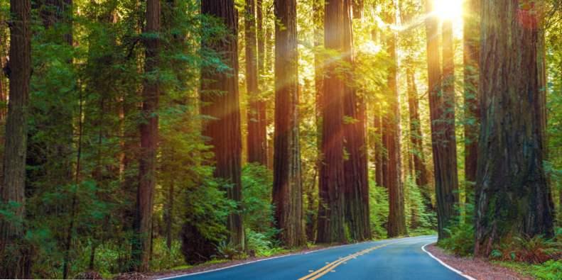 road trip californias pacific coast highway