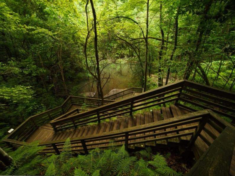 see what makes devils millhopper in florida so incredible