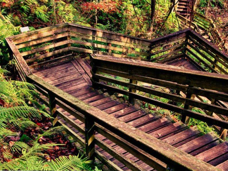 see what makes devils millhopper in florida so incredible 5