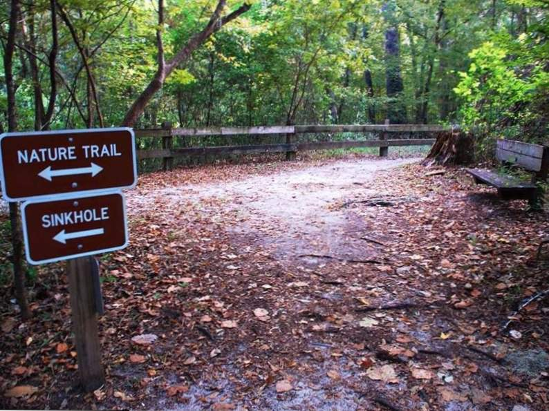 see what makes devils millhopper in florida so incredible 6