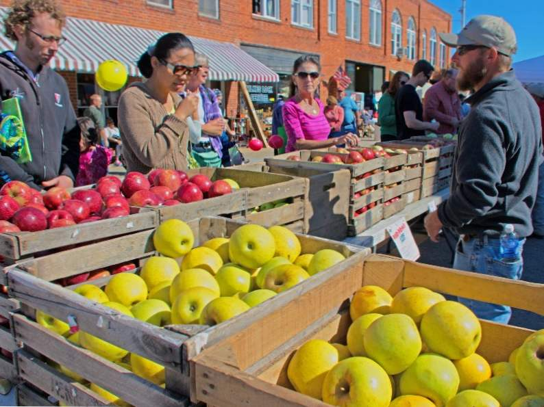the 7 best fall festivals to visit in north carolina 3