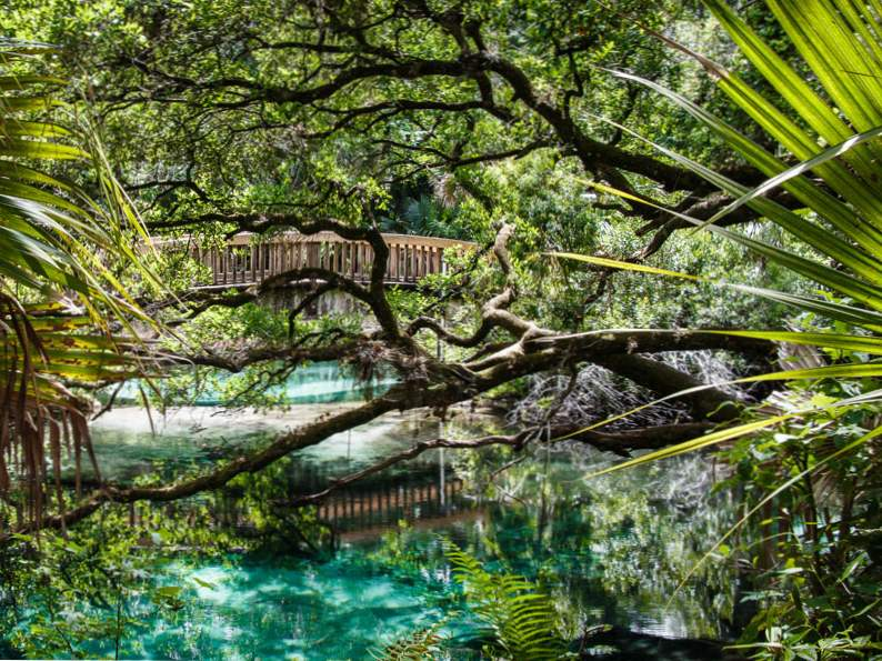 top 9 florida vacations in the fall 5