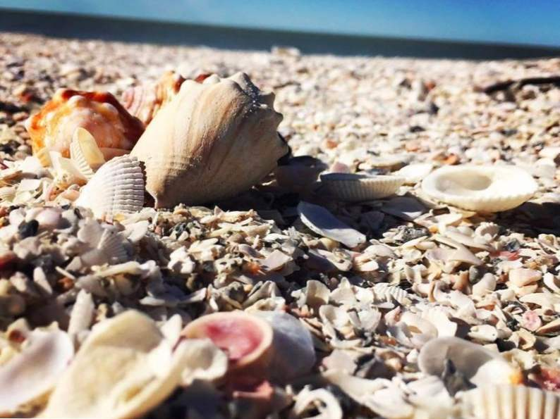 top 9 florida vacations in the fall 9