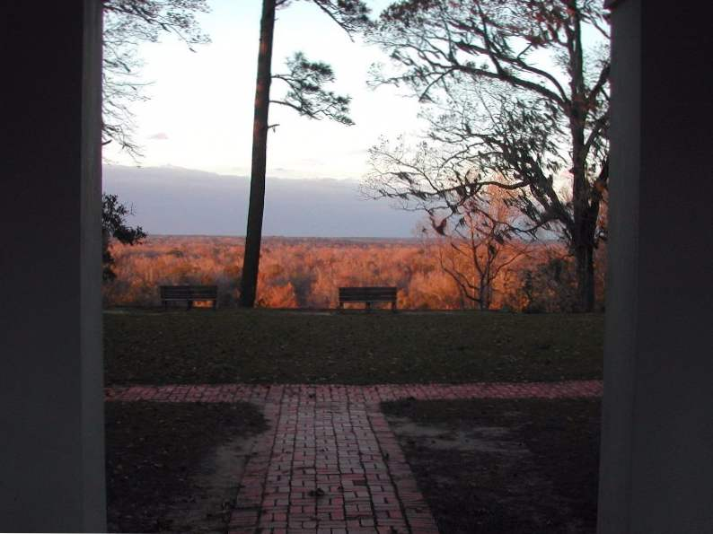 torreya state park might be floridas best place for fall foliage 2