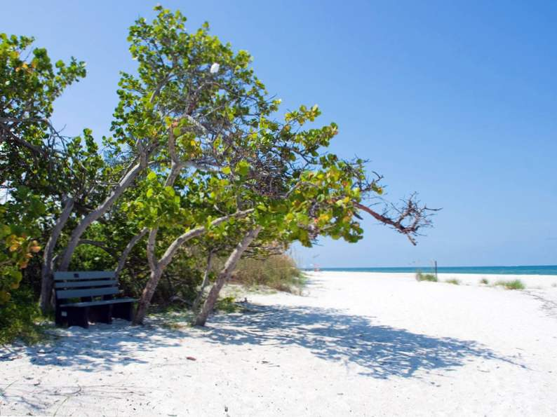 visit marco island in southwest floridas ten thousand islands 2