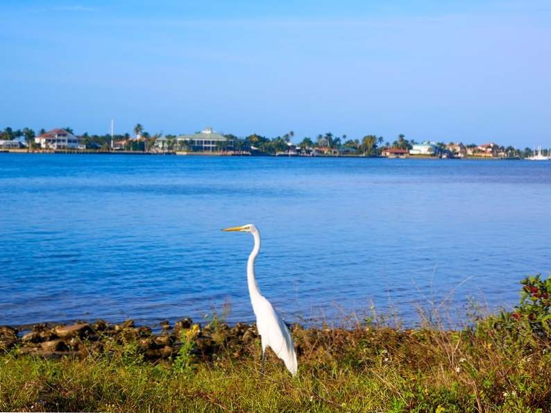 visit marco island in southwest floridas ten thousand islands 3