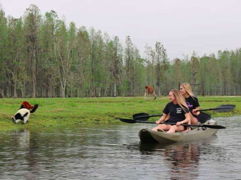 you can go on a kayak safari in lakeland florida 2