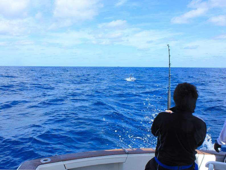 10 family destinations for florida fishing 2