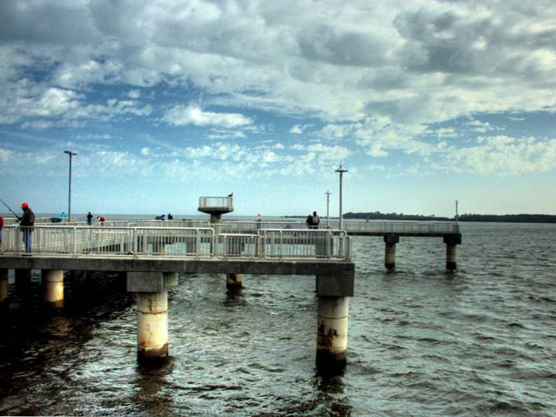 10 family destinations for florida fishing 7