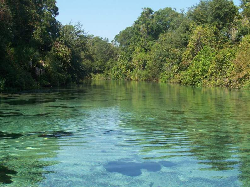 10 springs in florida for the nature lover to visit 2