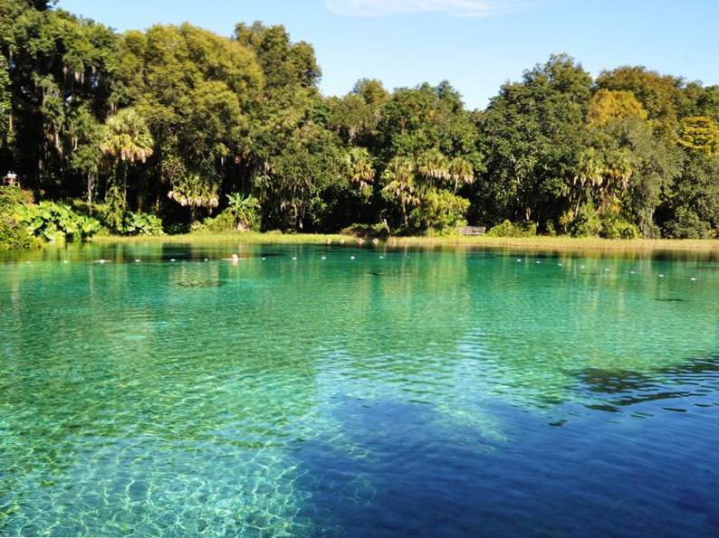 10 springs in florida for the nature lover to visit 3