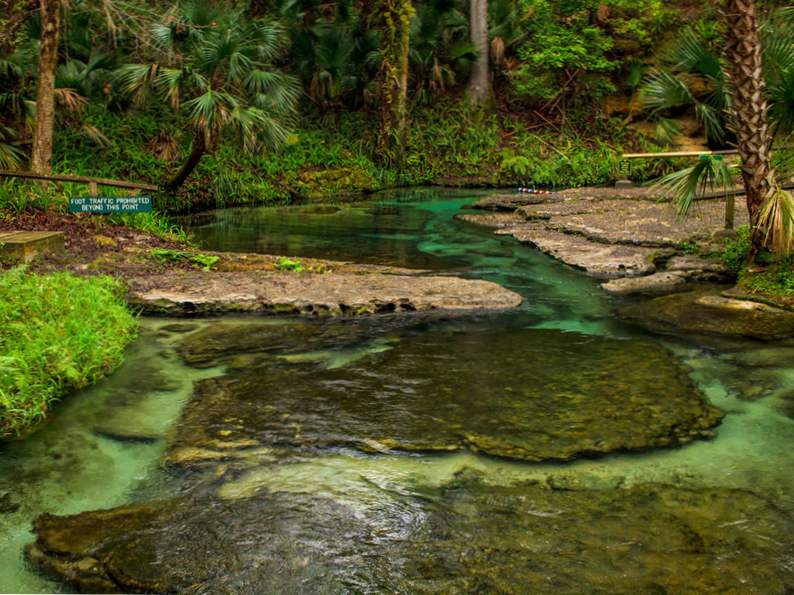 10 springs in florida for the nature lover to visit 4
