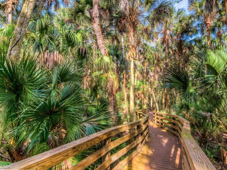 10 totally underrated hiking trails in florida