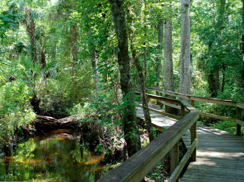 10 totally underrated hiking trails in florida 10