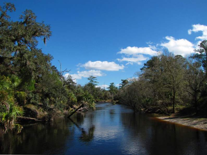 10 totally underrated hiking trails in florida 7