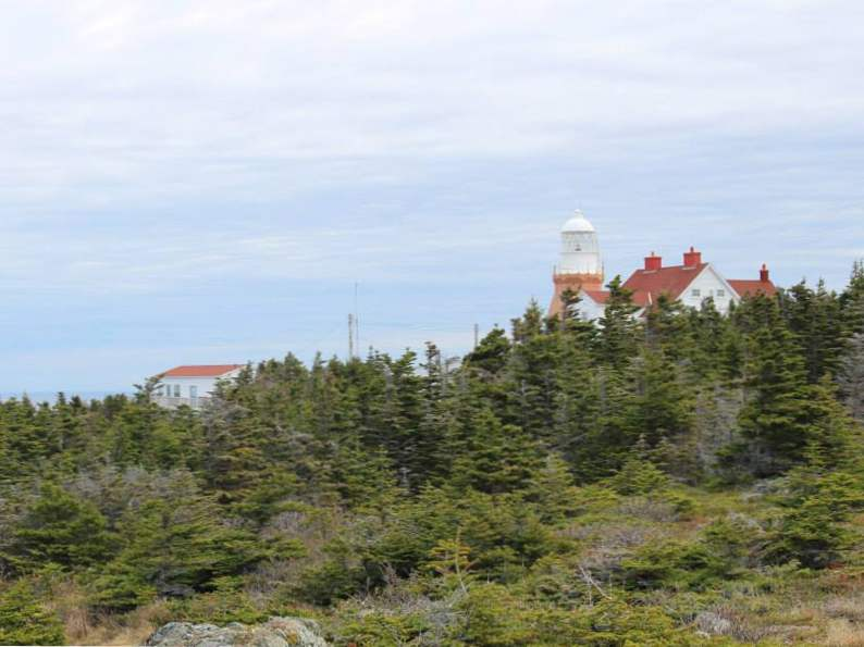 19 must experience sights and attractions in newfoundland 13