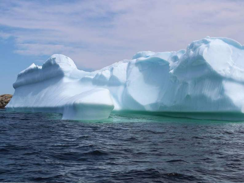 19 must experience sights and attractions in newfoundland 14