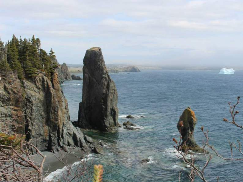 19 must experience sights and attractions in newfoundland 8
